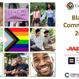 Black LGBTQ Community Survey 2020-2021